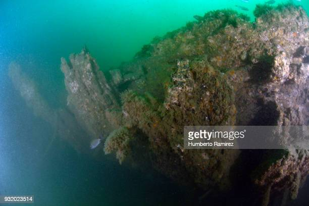 Part of the stern of the San Pedro Alcantara shipwreck.