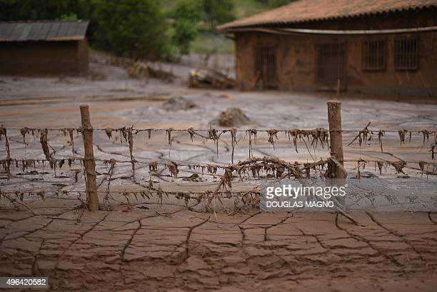 Partial view of mudcovered Paracatu de Baixo buried by an avalanche of mud and mining sludge in Minas Gerais Brazil on November 9 2015 Brazilian...