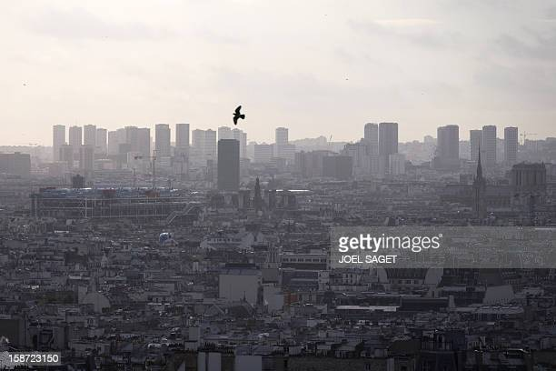 Partial view of Paris taken on December 26 2012 AFP PHOTO / JOEL SAGET