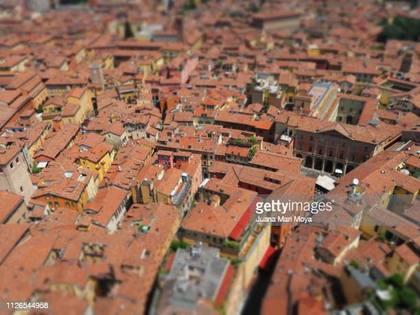 Partial view of the city of Bologna (Italy) from the Asinelli tower