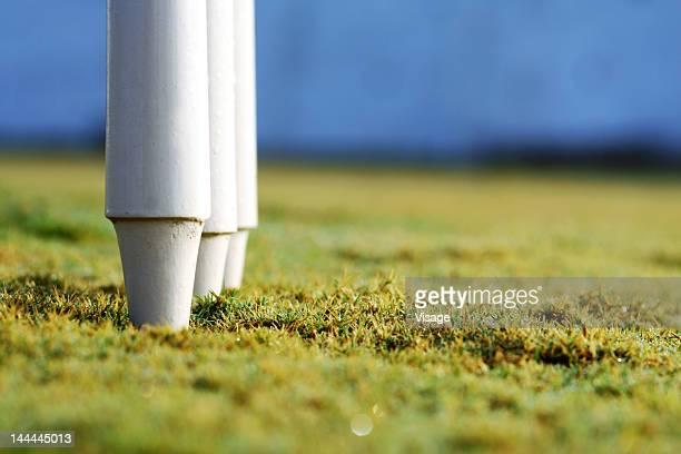 partial view of the cricket stumps - campo de críquet fotografías e imágenes de stock