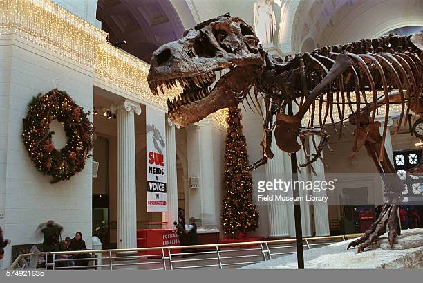 Partial view of the skeleton of Sue Tyrannosaurus Rex at the Field Museum Chicago Illinois December 22 2000 A fundraising campaign poster that reads...