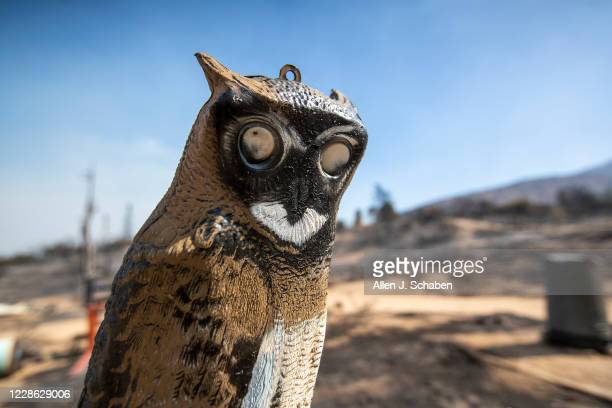 Partially burned owl ornament remains amidst burned buildings as the Bobcat fire continues to burn in the Angeles National Forest in Juniper Hills...