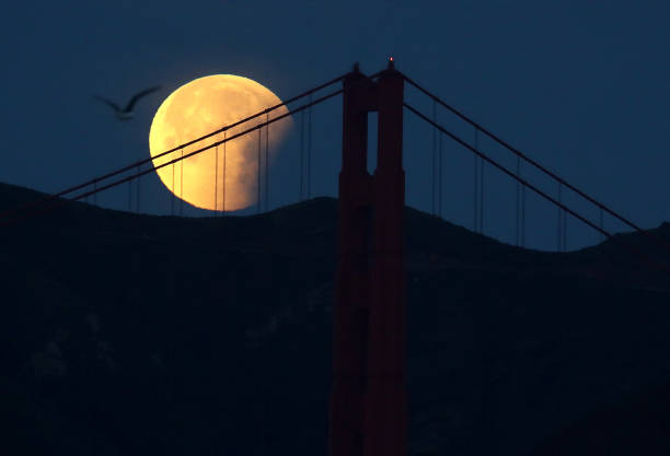 Rare 'Super Blue Blood Moon' Makes Appearance On U.S. West Coast