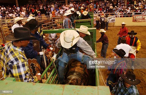 A participant of the 18th annual Bill Pickett Invitational Rodeo sits on top of a bull in a chute at the arena July 21 2001 in Los Angeles CA The...