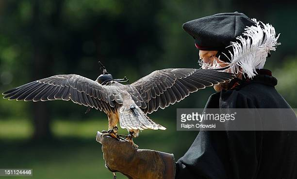 A participant of the historical reenactment of a knights' tournament in the Middle Ages holds a falcon on September 1 2012 in St Wendel Germany The...