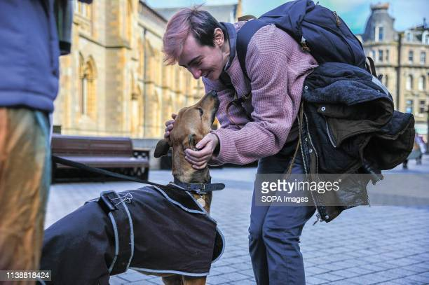 A participant seen caressing a dog during the 2019 Trans Pride march in Dundee Hundreds of members of the LGBT community marched through Dundee as...