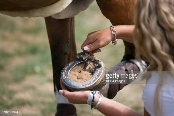 A participant seen taking care of a horse during the Great Yorkshire Show 2018 on day one The Great Yorkshire Show is the biggest 3 days agricultural...