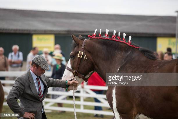 A participant seen with his horse during the Great Yorkshire Show 2018 on day one The Great Yorkshire Show is the biggest 3 days agricultural event...