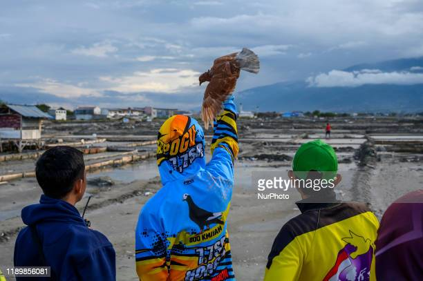 Participant waved a female dove to be visited by a male dove in a racing dove competition in Palu, Central Sulawesi, Indonesia on December 21, 2019....
