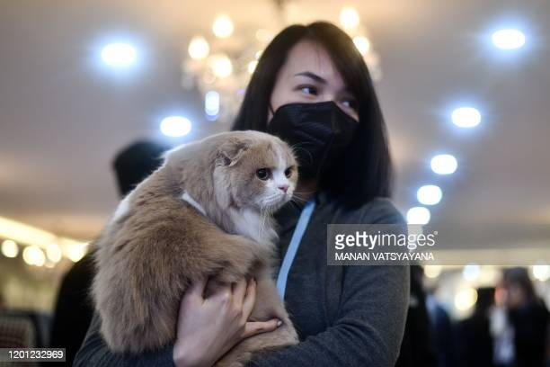 A participant wearing a protective facemask carries her cat Mochi a highland fold breed during Vietnam's first national cat show in Hanoi on February...