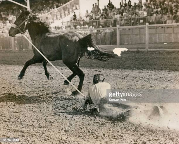 A participant's aide in The Denver Post Wild Horse Race refused to give up and got a 100yard ride on ground