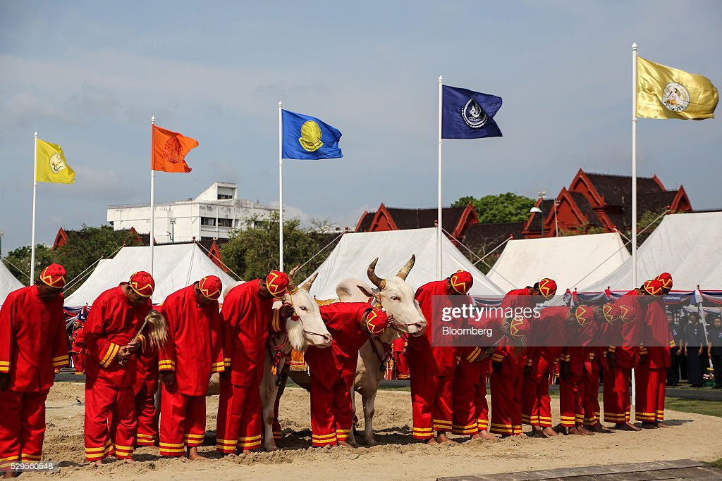 Participants bow before Maha Vajiralongkorn, crown prince of Thailand, not pictured, during the Royal Ploughing Ceremony at Sanam Luang park in Bangkok, Thailand, on Monday, May 9, 2016. This year may be a better one for Thai rice production. At least, that's what two sacred oxen and a ceremonial lord forecast at an annual ploughing ceremony. Photographer: Dario Pignatelli/Bloomberg via Getty Images