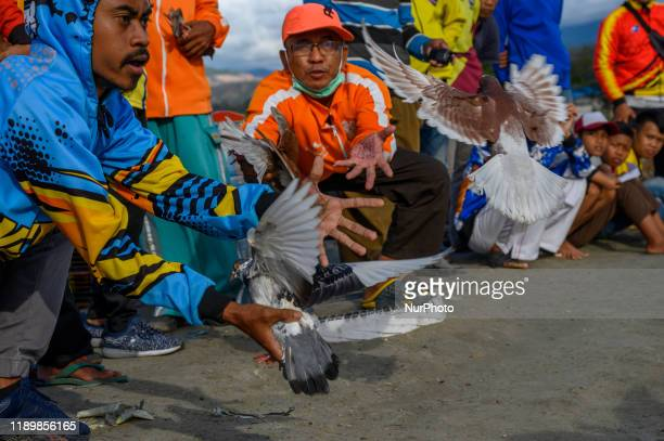 Participants catch male pigeons flying to female pigeons at the racing pigeon competition in Palu, Central Sulawesi, Indonesia on December 21, 2019....