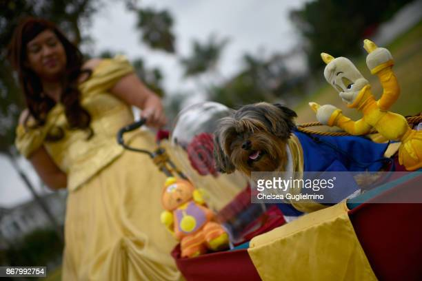 Participants dressed as Beauty and the Beast attend the Haute Dog Howl'oween Parade on October 29 2017 in Long Beach California
