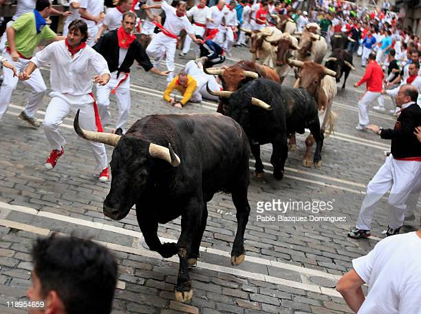 Participants fall down while fighting bulls run close to them during the San Fermin running of the bulls on July 13 2011 in Pamplona Spain For eight...
