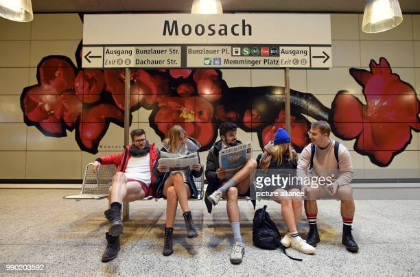Participants in the No Pants Subway Ride sitting at Moosbach underground station in Munich Germany 7 January 2018 Every January thousands of people...