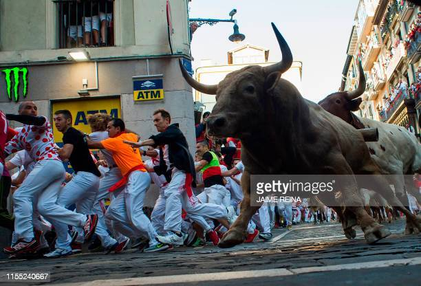 Participants run next to Nunez del Cuvillo fighting bulls and steers on the sixth bullrun of the San Fermin festival in Pamplona, northern Spain on...