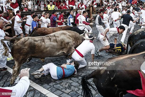 Participants run with fighting bulls during the bullrun of the annual San Fermin Festival in Pamplona Spain on July 07 2016 The San Fermin Festival...