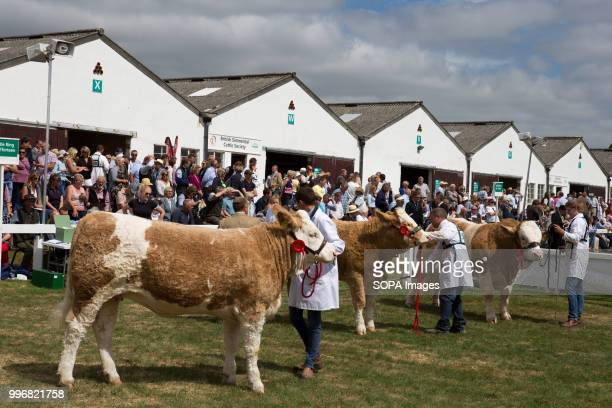 Participants seen with their cows during the Great Yorkshire Show 2018 on day one The Great Yorkshire Show is the biggest 3 days agricultural event...