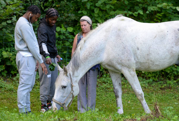 GBR: Ex-Convicts Receive Equine Therapy Rehabilitation From Key4Life Charity