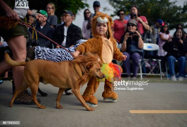 Participants walk during Haute Dog Howl'oween Parade on October 29 2017 in Long Beach California