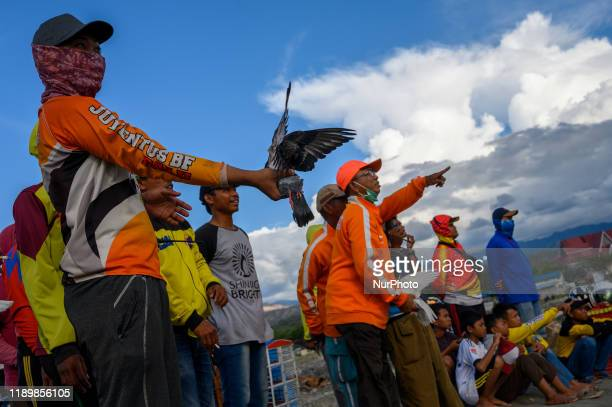 Participants waved a female dove to be visited by a male dove in a racing dove competition in Palu, Central Sulawesi, Indonesia on December 21, 2019....