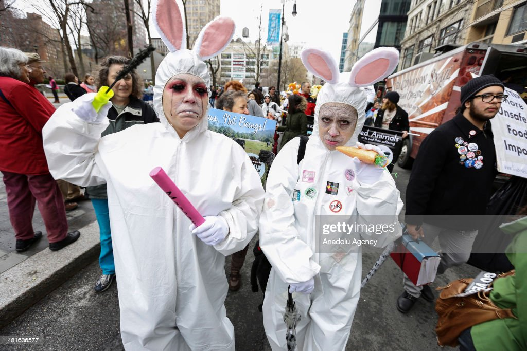 Participants wearing rabbit costumes, attend the 7th annual Veggie Pride Parade in New York City on March 30, 2014. Hundreds of vegetarians and animal rights activists marched from Gansevoort St. to Union Square during the 7th annual Veggie Pride Parade in New York City .