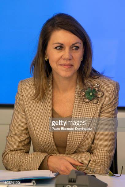 Partido Popular general secretary Maria Dolores de Cospedal attends a PP national executive comitee on February 2 2013 in Madrid Spain Spanish...