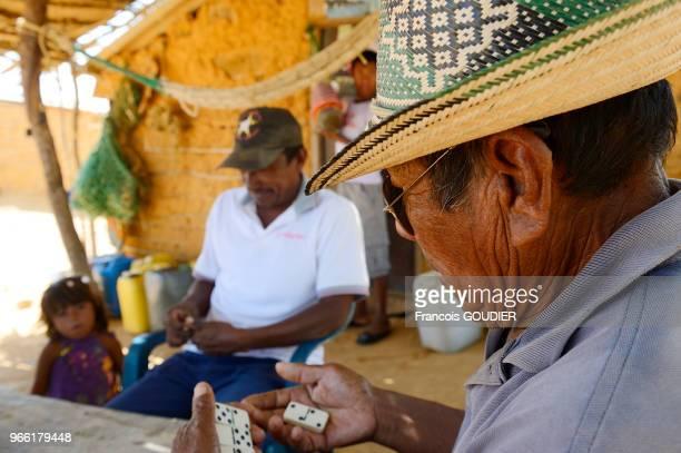 Partie de dominos dans un village Wayuu près de Punta Gallinas dans la région de la Guajira 20 mars 2015 Colombie