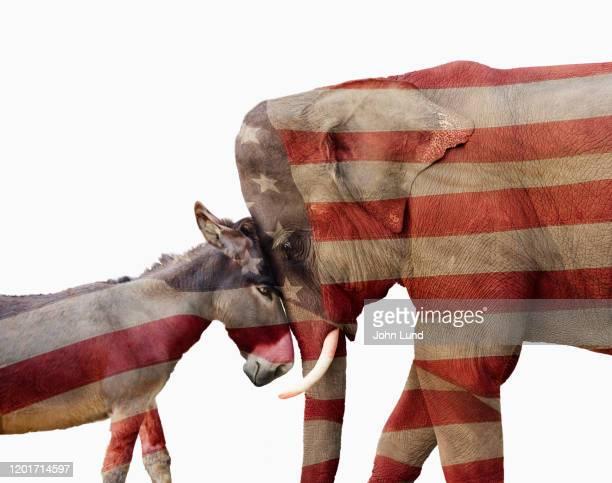 partisan political donkey and elephant - partido republicano americano - fotografias e filmes do acervo