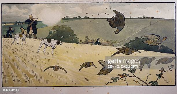 Partridge hunting engraving by Cecil Aldin