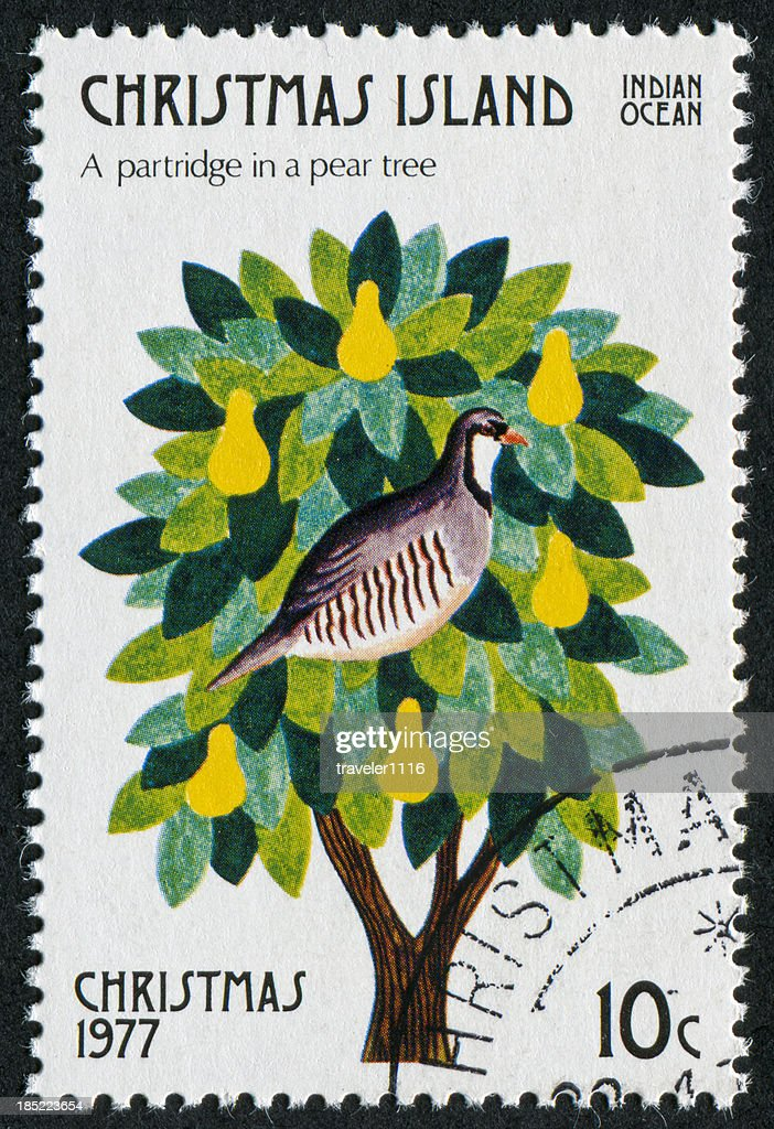 Partridge In A Pear Tree Stamp : Stock Photo