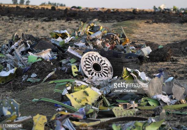 Parts of the landing gear lay in a pile after being gathered by workers during the continuing recovery efforts at the crash site of Ethiopian...