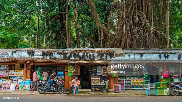 Pasar Pramuka Bird Market, Jakarta,Indonesia