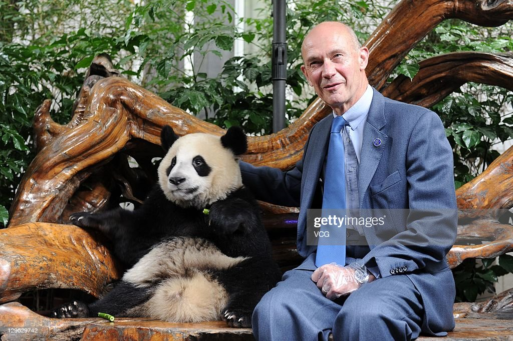 Pascal Lamy, director-general of the World Trade Organization poses with a giant panda at Chengdu Research Base of Giant Panda Breeding on October 17, 2011 in Chengdu, China. Pascal Lamy is invited to attend the 12nd Western China International Fair in Chengdu.