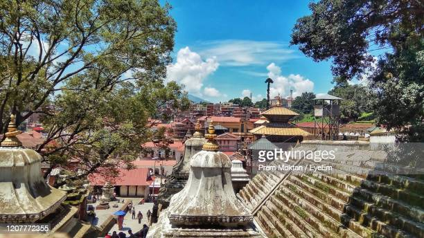 pashupatinath temple amidst trees against sky - pashupatinath stock pictures, royalty-free photos & images