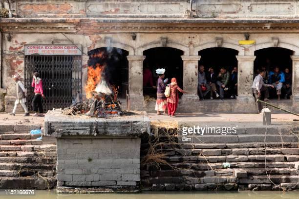 pashupatinath temple in kathmandu, nepal - pashupatinath stock pictures, royalty-free photos & images