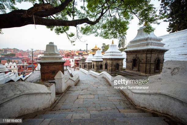 pashupatinath temple is one of the most significant hindu temples of lord shiva in the world, located on the banks of the bagmati river in the eastern part of kathmandu, the capital of nepal. - pashupatinath stock pictures, royalty-free photos & images