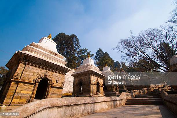 pashupatinath temple, nepal - pashupatinath stock pictures, royalty-free photos & images