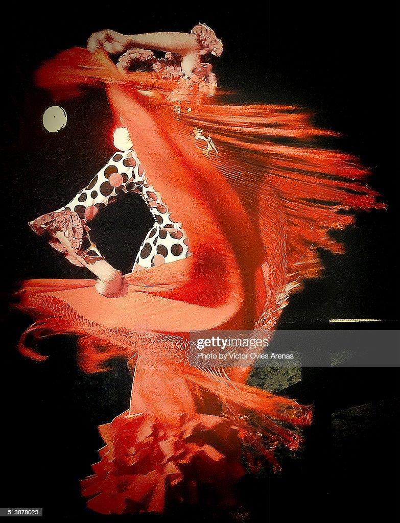 Pasion flamenca : Stock Photo