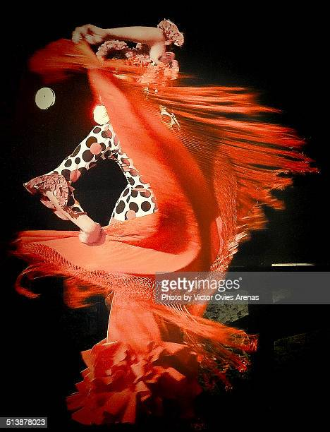 pasion flamenca - flamenco dancing stock photos and pictures
