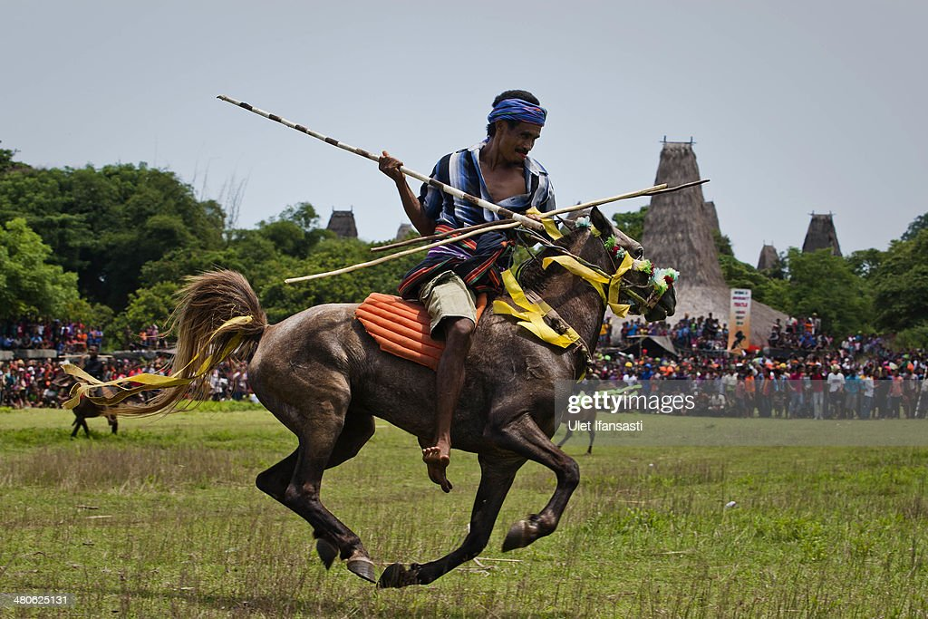 A Pasola rider prepares to throw his spear during the pasola war festival at Wainyapu village on March 25, 2014 in Sumba Island, Indonesia. The Pasola Festival is an important annual event to welcome the new harvest season, which coincides with the arrival of 'Nyale' sea worms during February or March each year. Pasola, an ancient ritual fighting game, involves two teams of men on horseback charging towards each other while trying to hit their rivals with 'pasol' javelins and avoid being hit themselves.