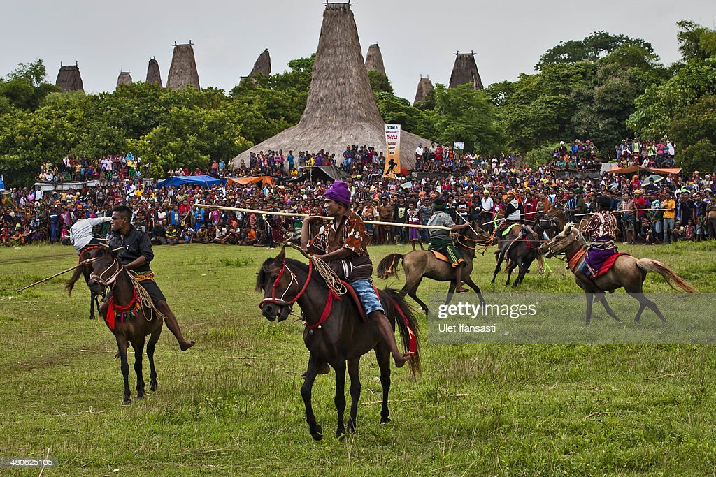 Pasola riders prepare to throw their spears during the pasola war festival at Wainyapu village on March 25, 2014 in Sumba Island, Indonesia. The Pasola Festival is an important annual event to welcome the new harvest season, which coincides with the arrival of 'Nyale' sea worms during February or March each year. Pasola, an ancient ritual fighting game, involves two teams of men on horseback charging towards each other while trying to hit their rivals with 'pasol' javelins and avoid being hit themselves.