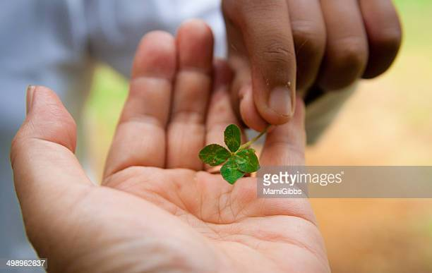 I pass a four-leaf clover in your hand