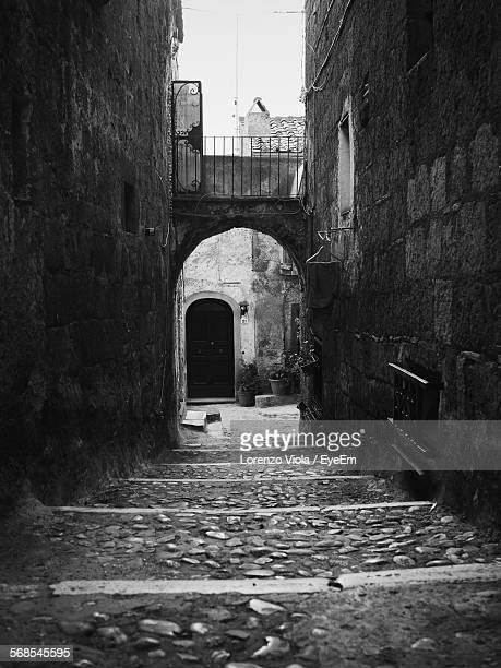 Passage Leading Towards Arch Amidst Houses