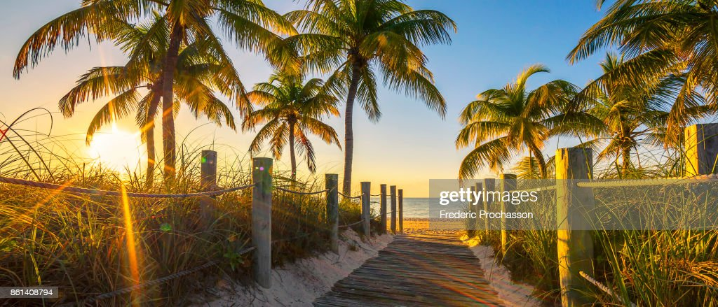 Passage to the beach at sunrise : Stock Photo