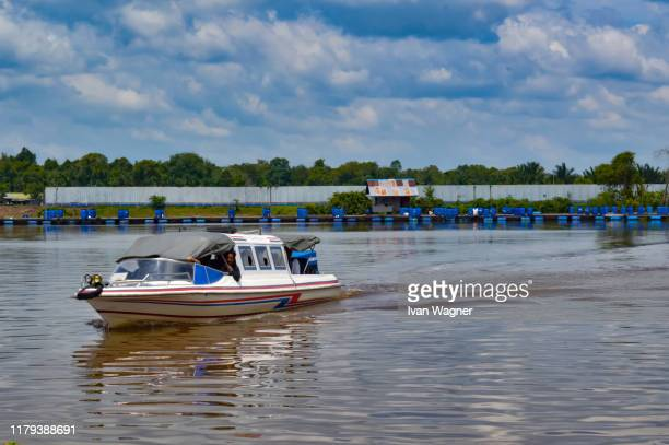 passanger speed boat - west kalimantan stock pictures, royalty-free photos & images