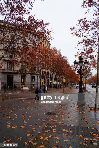 Passeig de Gracia in Autumn Colours, Barcelona, Spain