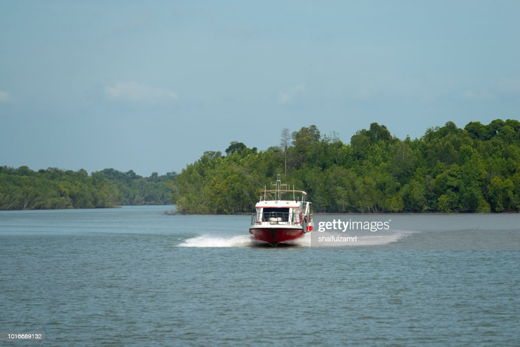 Passenger boat from Port Klang route to Pulau Ketam via mangrove trees, a shrub or small tree that grows in coastal saline or brackish water. : Stock Photo